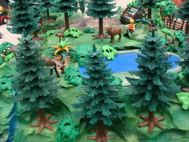 Just Steam Princes Draka Playmobil Balen 2018