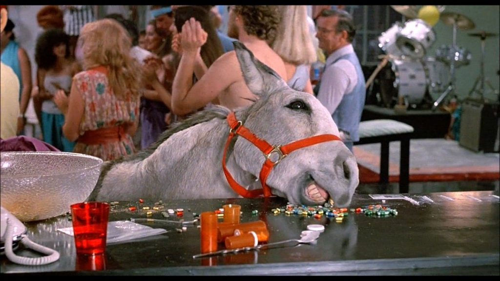 Bachelor Party 1984 donkey